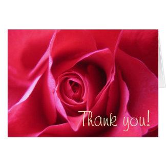 Tarjeta Rosa rojo
