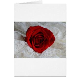 Tarjeta Rosa rojo del amor
