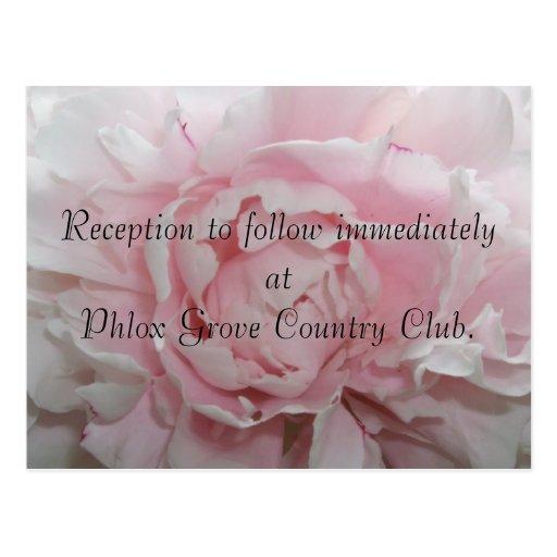 Tarjeta rosada de la recepción nupcial del Peony Postales