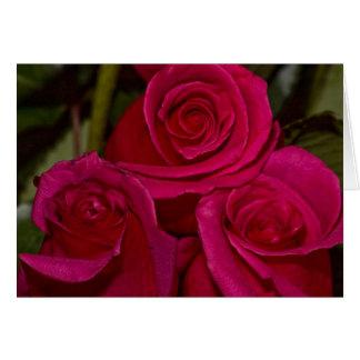 Tarjeta rosas de tres