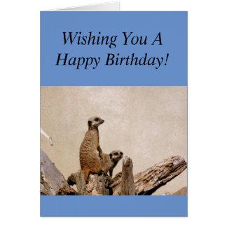 Tarjeta ¡Saludo del feliz cumpleaños de Meerkats!
