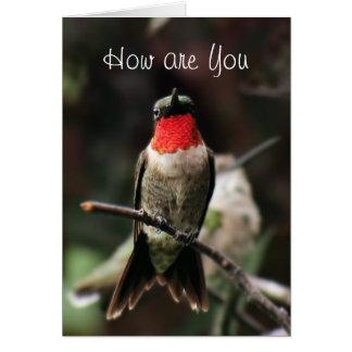 Tarjeta Saludo o notecard-customiz masculino del colibrí