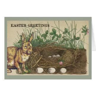 Tarjeta Saludos conejo, huevos, jerarquía, hierba, trébol