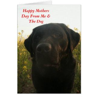 Tarjeta Saludos del día de madres