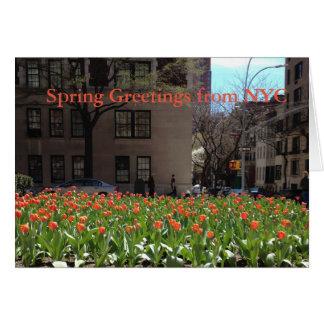 Tarjeta Saludos rojos de la primavera de los tulipanes de