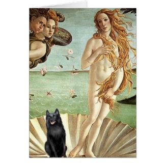 Tarjeta Schipperke 5 - Nacimiento de Venus