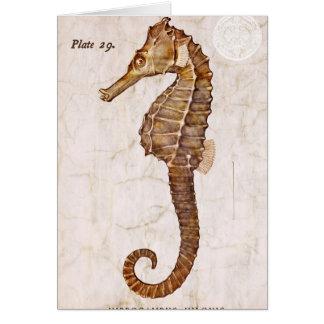 Tarjeta Seahorse de la criatura del caballo de mar del