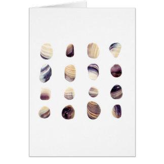 Tarjeta Seashells resistidos