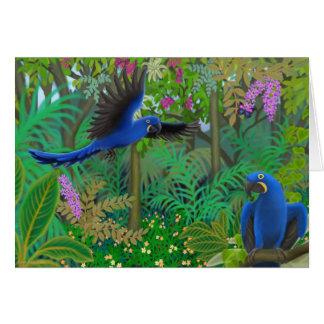 Tarjeta Selva del Macaw del jacinto
