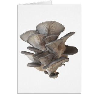 Tarjeta Seta de ostra