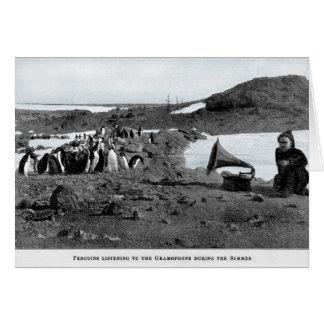 Tarjeta Shackleton en gramófono antártico con los