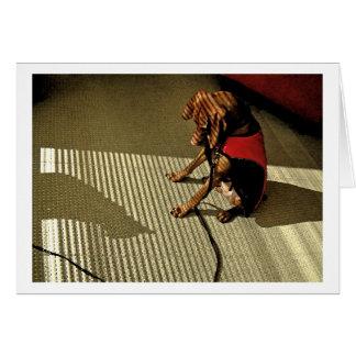 Tarjeta Shadowplay 1
