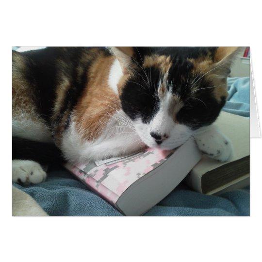 Tarjeta siesta del gato