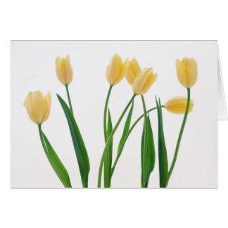 Tarjeta Simple gracias cardar - tulipanes amarillos