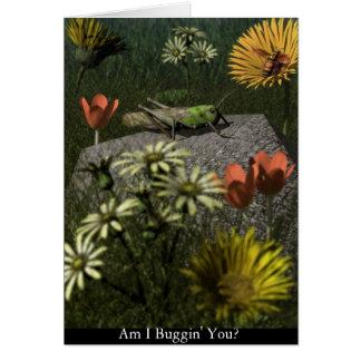 Tarjeta ¿Soy Buggin usted?
