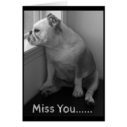Tarjeta Srta. You Greeting Tarjeta-Triste Bulldog