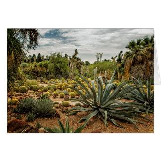 Tarjeta Succulents en no. 3 del jardín del desierto de