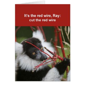 Tarjeta superada del lemur