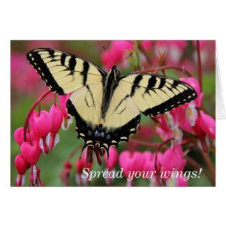 Tarjeta Swallowtail del este