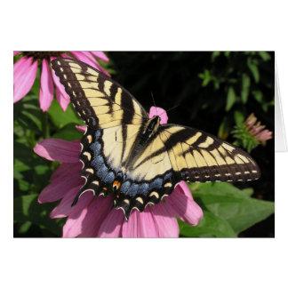 Tarjeta Swallowtail en Echinacea