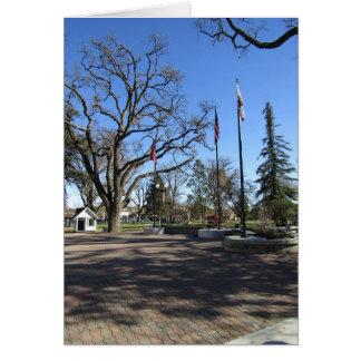 Tarjeta Tarjeta:  Entrada al parque céntrico de la ciudad