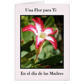 Tarjeta Ti de Dia de Las Madres Una Flor para