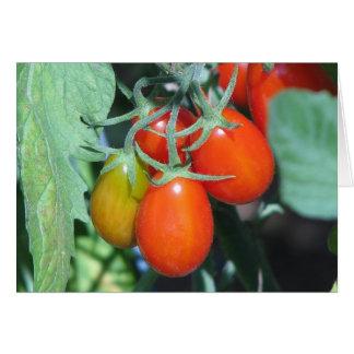 Tarjeta Tomates crecientes