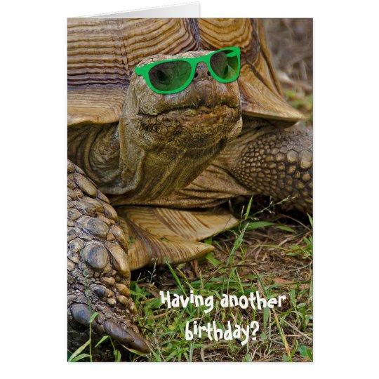 Tarjeta tortuga humor-vieja del cumpleaños en vidrios