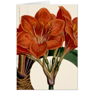 Tarjeta Tote botánico de Curtis de la flor