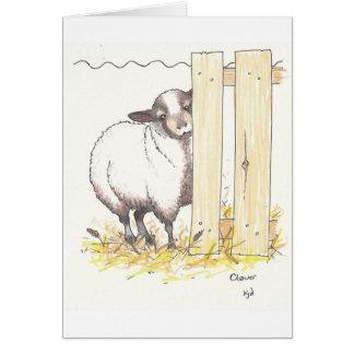 Tarjeta Trébol las ovejas de Shetland