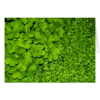 Tarjeta Trébol verde