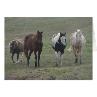 Tarjeta Tres caballos y un potro