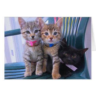 Tarjeta Tres gatitos