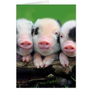 Tarjeta Tres pequeños cerdos - cerdo lindo - tres cerdos