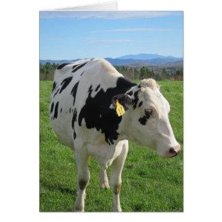 Tarjeta Tres vaca Legged 5x7