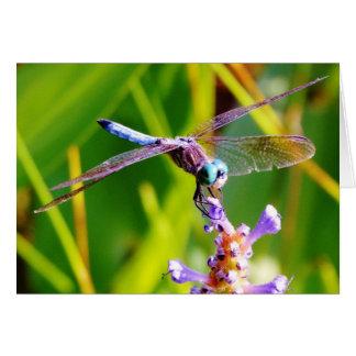 Tarjeta Trullo y libélula púrpura