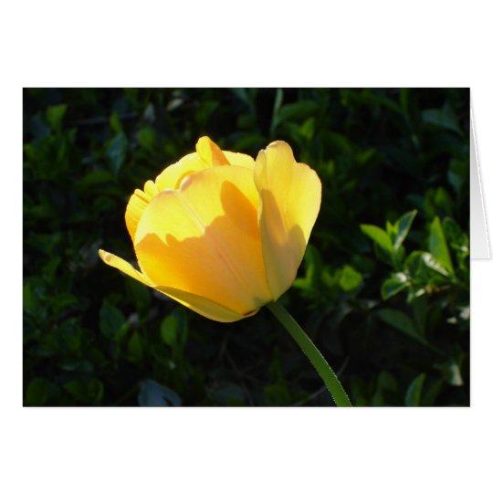 Tarjeta Tulipán amarillo