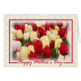 Tarjeta Tulipanes blancos amarillos rojos - frontera roja