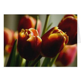Tarjeta Tulipanes de las pastillas de caramelo