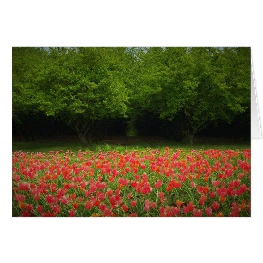 Tarjeta Tulipanes y árboles