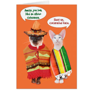 Tarjeta Un Cinco de Mayo de los gatos irritables