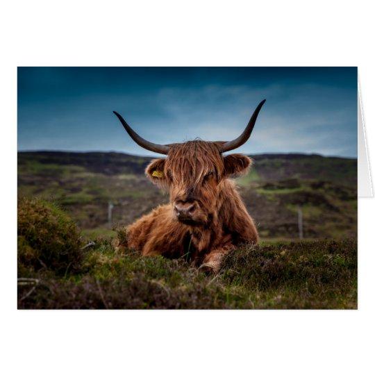 Tarjeta Vaca de la montaña