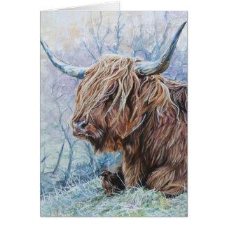 Tarjeta Vaca de la montaña, mañana escarchada