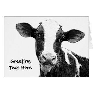 Tarjeta Vaca lechera - becerro blanco y negro de la
