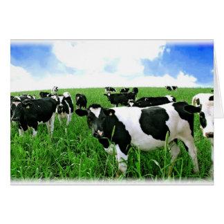Tarjeta Vacas de leche en campo verde