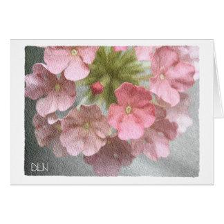 Tarjeta Verbena rosada/mirada floral del arte/de la