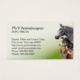 Tarjeta veterinaria de la cita y de visita de la