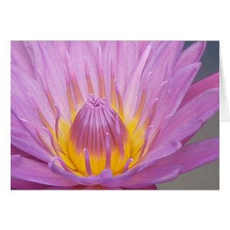 Tarjeta Waterlily rosado Notecard