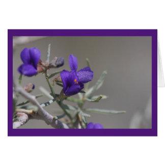 Tarjeta Wildflower púrpura del desierto