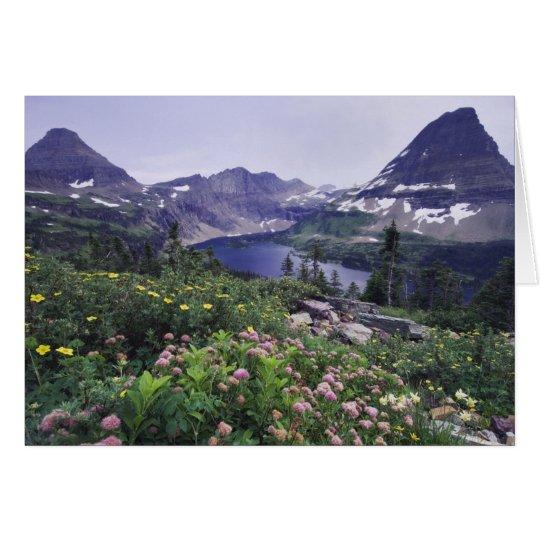 Tarjeta Wildflowers y lago ocultado, arbustivos